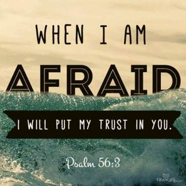 Image result for psalm 56 3